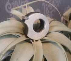 Ebenholz-Silber-Ring, mit Variationsmöglichkeiten