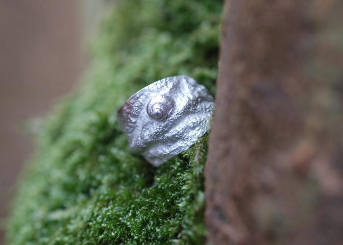 Ohrmuschel-Ring