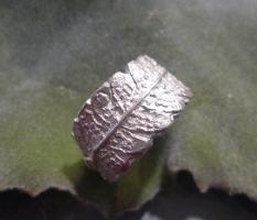 Farn-Ringe