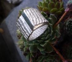 Sepia-Ring